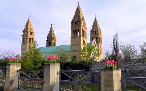 Székesegyház, Pécs