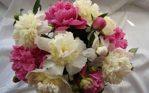 Pünközsdi rózsa - Virágcsokor
