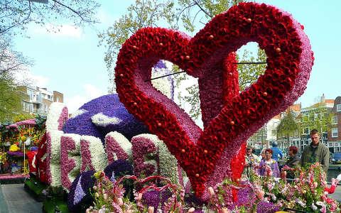 Haarlem,Holland,  Flowershow