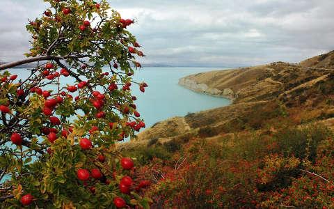 Pukaki-tó, Új-Zéland