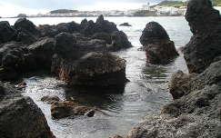 Sao Roque öble, Pico sziget, Azori-szigetek