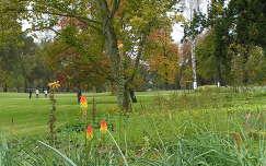 Gödöllő,Királyi kastély parkja őszi szinekben