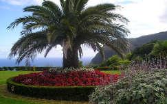 Kilátópont, Sao Miguel, Azori-szigetek