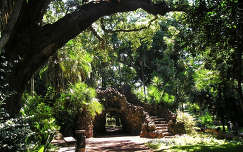 Antonio Borges park Ponta Delgadaban, Sao Miguel, Azori-szigetek