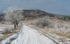 Sokobanja- Szerbia