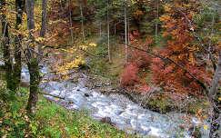 Ausztriai tájkép, Ausztria
