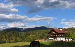 ház ausztria alpok faház