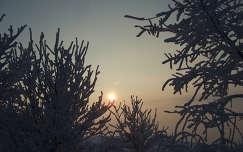 Lemenő Nap a Sárhegy tetejéről (Mátra)