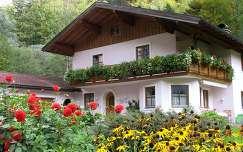 nyári virág dália ausztria ház kúpvirág
