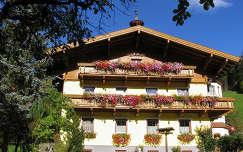 erdély muskátli ausztria virágcsokor és dekoráció ház