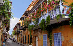 bougainvillea ház utca erkély virágcsokor és dekoráció
