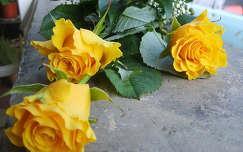 rózsa virágcsokor és dekoráció névnap és születésnap