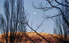 Moon - Turin/Itália