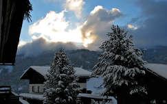 fenyő alpok ház tél fa