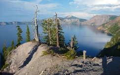 fa fenyő usa tó kráter-tó