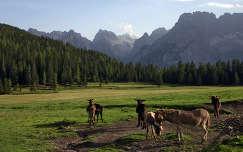 Misurina-hegység, Dolomitok, Olaszország