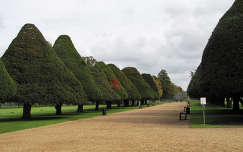 Hampton Court - Anglia