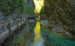 Szlovénia - Vintgar szurdok