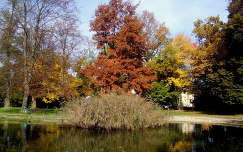 Szlovénia, Muraszombat, ősz
