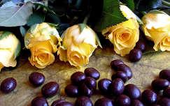 sárga rózsák + csokiba mártott kávészemek