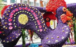 Haarlem-Nederland, Flowershow