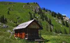 Braies-Dolomitok, Dél-Tirol, Olaszország. Pásztorkunyhó.