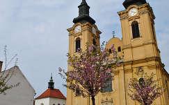 Szent István Bazilika, Székesfehérvár