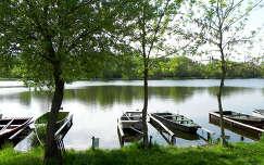 Tüskei-tó