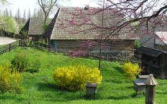 Ungvári skanzen, Kárpátalja, Ukrajna