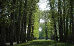 Versailles-i kastély, park