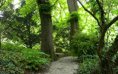 kertek és parkok tavasz