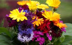 Nyári virágcsokor