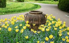 nefelejcs kertek és parkok tulipán