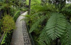 Monte Palace Trópusi kertben, Funchal, Madeira