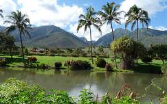 Hawai,Maui