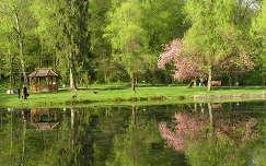 Beregvári kastély parkja, Kárpátalja, Ukrajna