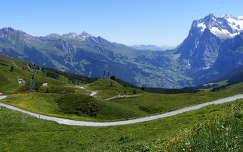 Kleine Scheidegg, Svájc