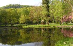 Beregvári kastély parkja,Kárpátalja, Ukrajna