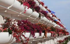 Szállodai erkély, Fuerteventura, Kanári-szigetek