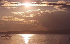 Balatonfenyves a naplementében
