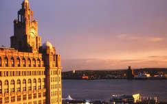 Liver madár a Liverpooli városház tornyán