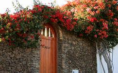 Ráfonódva, Lanzarote, Kanári-szigetek