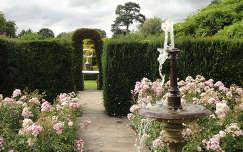 Boleyn Anna kertje, Anglia