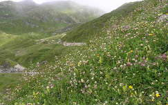 St.Gotthard hágó,Svájc