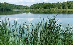 Őrség, Vadása tó