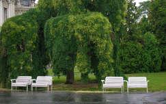 Festetics Kastély-kert