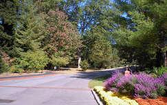 Asheville, NC. USA - Út, park