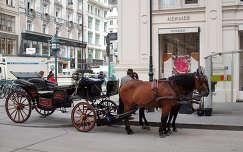 Sétakocsi Bécs, belváros.