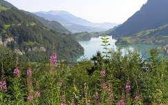 Lungerni tó, Svájc