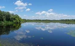 A Göbe tó ( Tisza - tó)